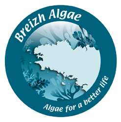 Breizh Algae Logo